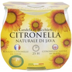 Price's Candles Citronella Garden Candle in Glass Jar - 25 Hours Burn Time