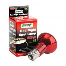 ProRep Red Night Spot Lamp Screw Fitting - 60W ES