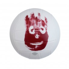 Mr Wilson Volleyball