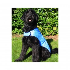Prestige Cool Dog Cooling Coat - Large, Blue