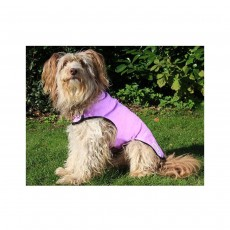 Prestige Cool Dog Cooling Coat - Medium, Purple