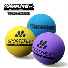 SPORTSPET Tough Bounce Rubber Dog ball 3pk